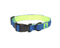 The Rufus & Coco Air Mesh Dog Collars in bright and funky colours - breathable, durable, adjustable and washable!