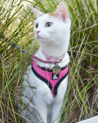 Soft Mesh Cat Harness