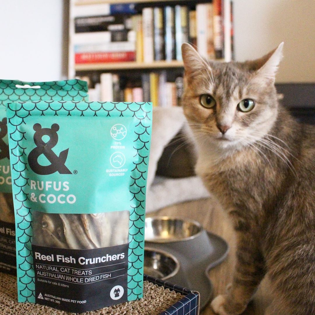 good.girl.gemma with Reel Fish cat treats by Rufus and Coco