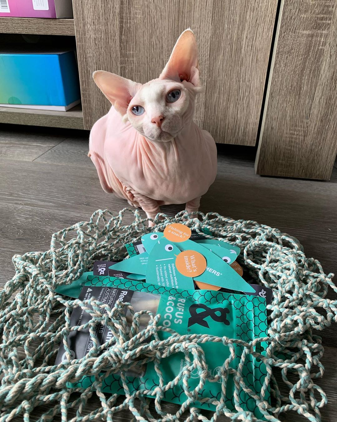 clementinethesphynx with Reel Fish cat treats by Rufus and Coco