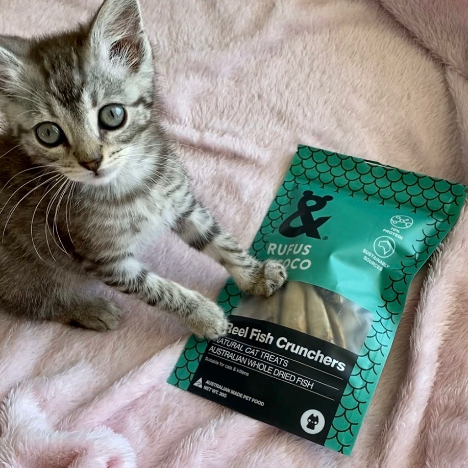 meekothepuddycat  with Reel Fish cat treats by Rufus and Coco