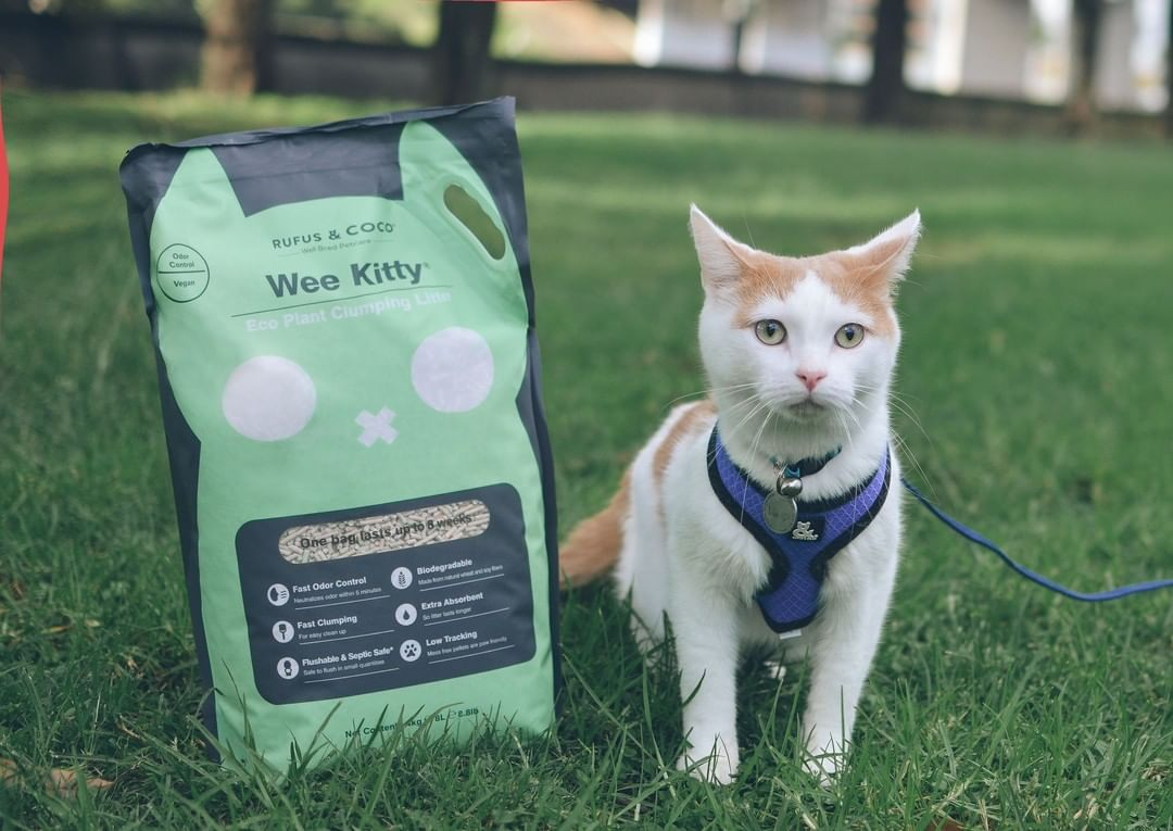 theadventuresoflumosandnox with Wee Kitty Cat Litter by Rufus and Coco