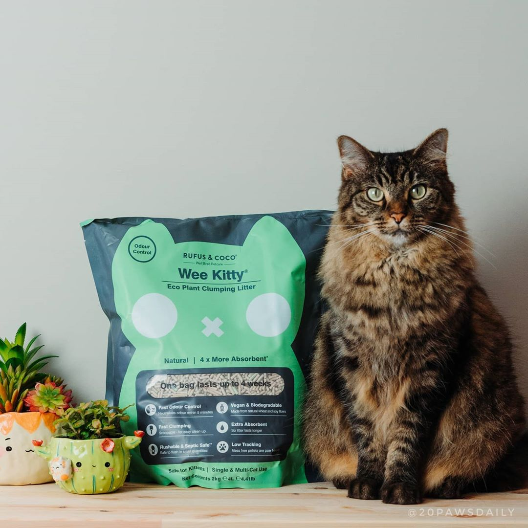 20pawsdaily with Wee Kitty Cat Litter by Rufus and Coco