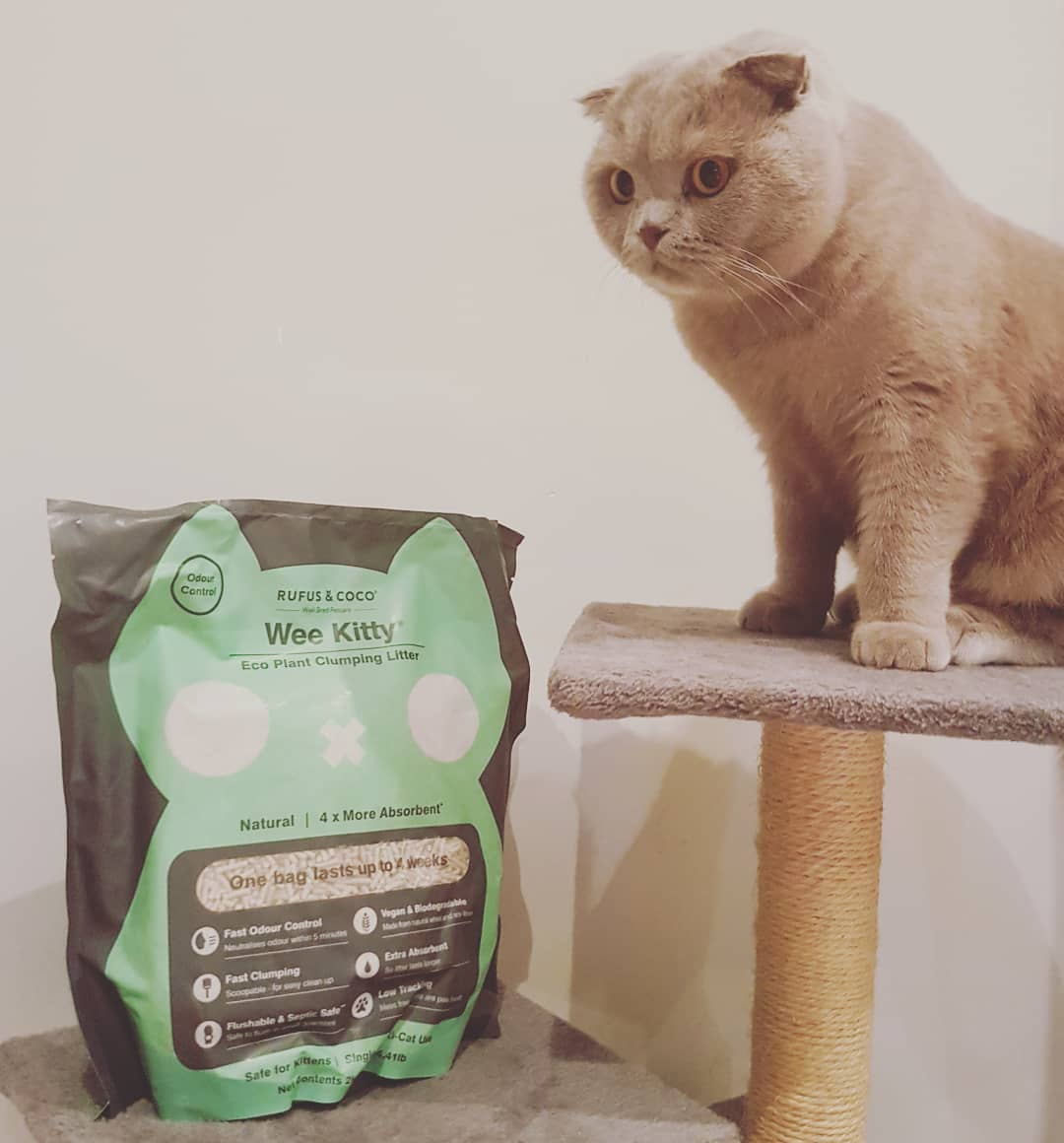 archiepusspuss with Wee Kitty Cat Litter by Rufus and Coco