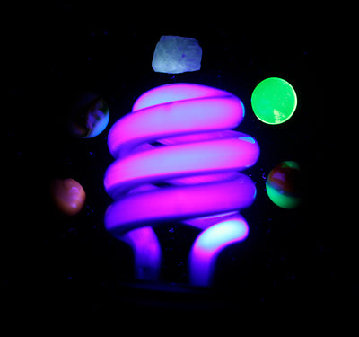 UV Light Bulb/ Blacklight