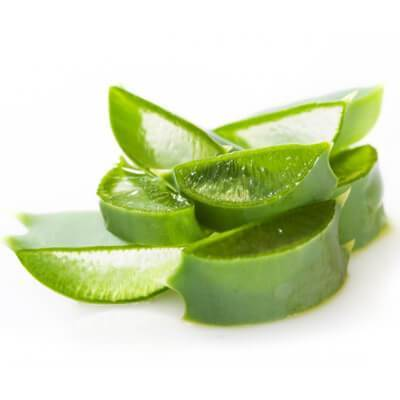 organic aloe vera in our body scrubs