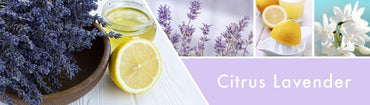 Citrus Lavender Fragrance