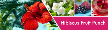 Hibiscus Fruit Punch Fragrance