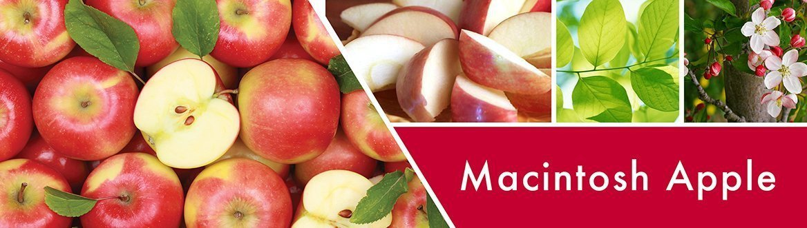 Macintosh Apple Fragrance