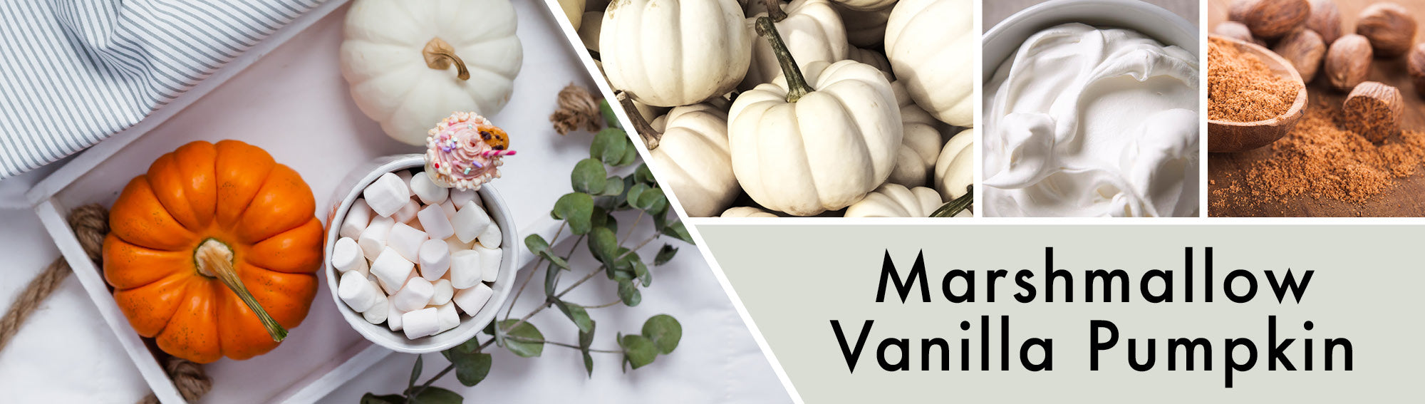 Marshmallow Vanilla Pumpkin Fragrance