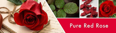 Pure Red Rose Fragrance