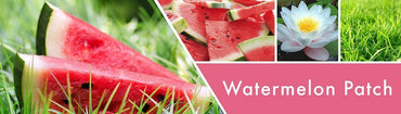 Watermelon Patch Fragrance