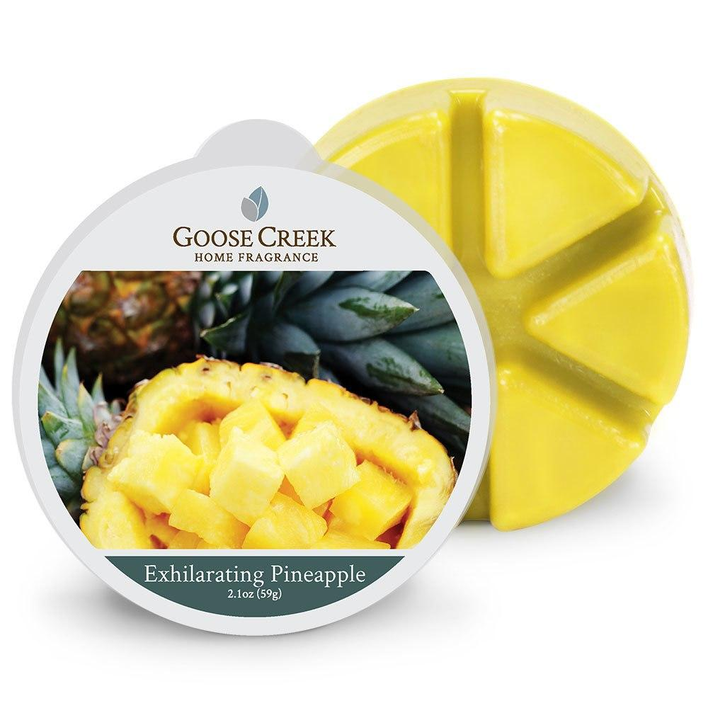Exhilarating Pineapple Wax Melt