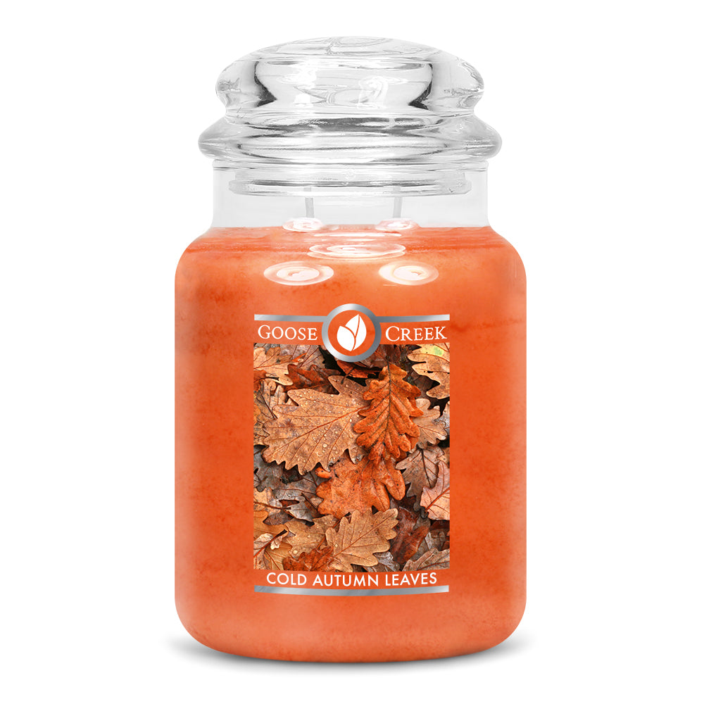 Cold Autumn Leaves Large Jar Candle