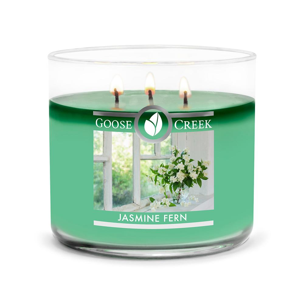 Jasmine Fern Large 3-Wick Candle