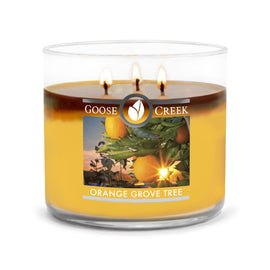 Orange Grove Tree Large 3-Wick Candle