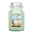 Pina Colada Large Jar Candle