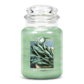 Sage Leaf & Citrus Large Jar Candle