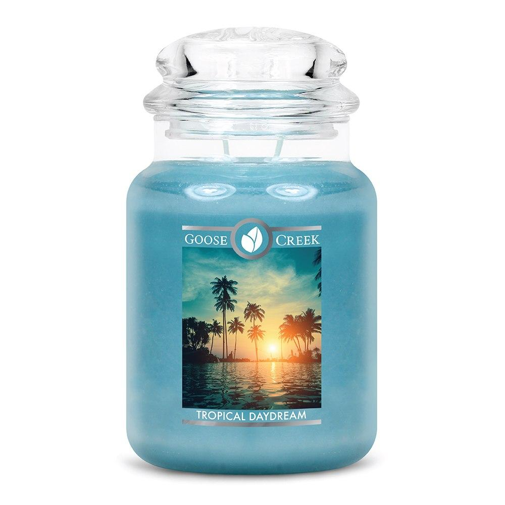 Tropical Daydream Large Jar Candle
