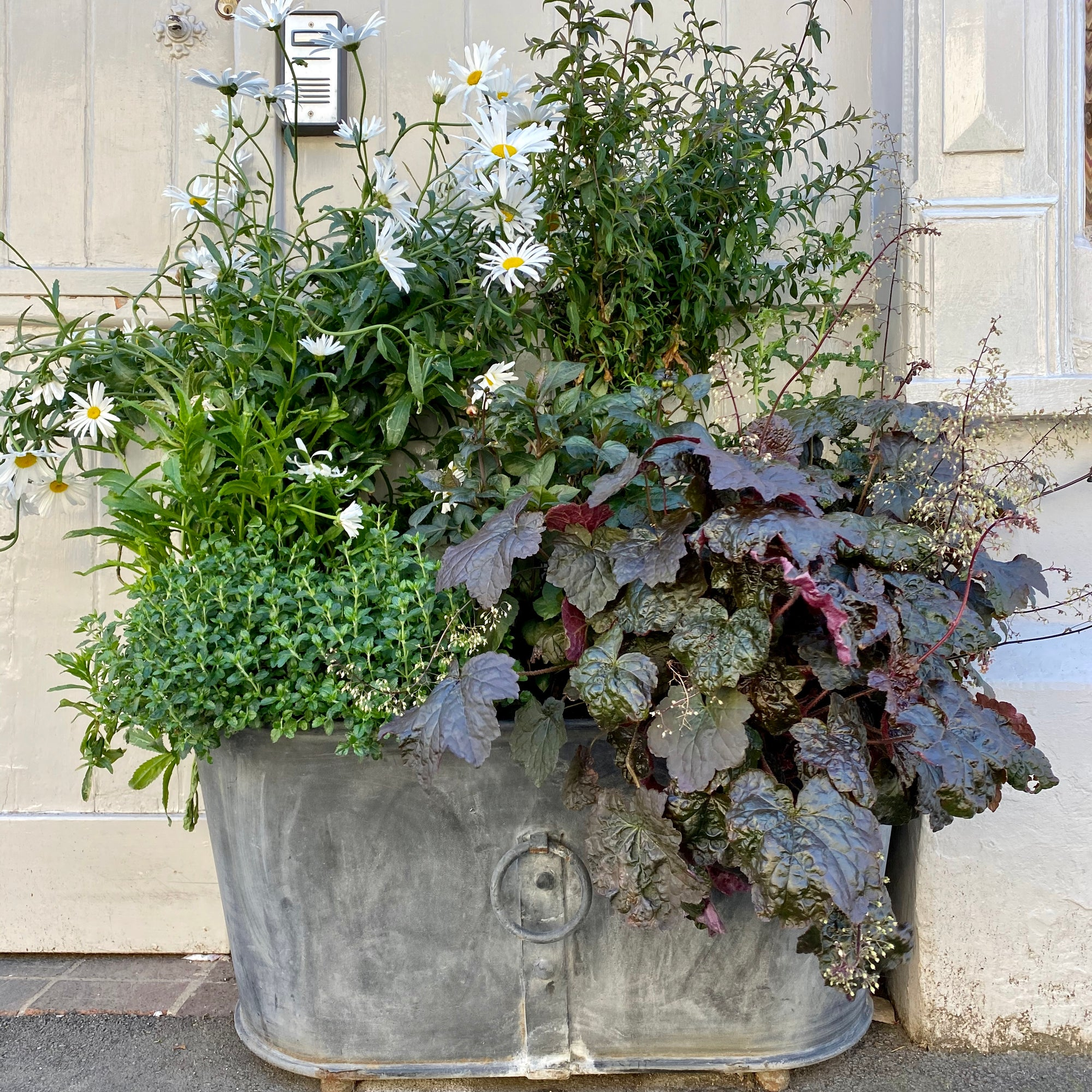 Barnbury - Outdoor planters