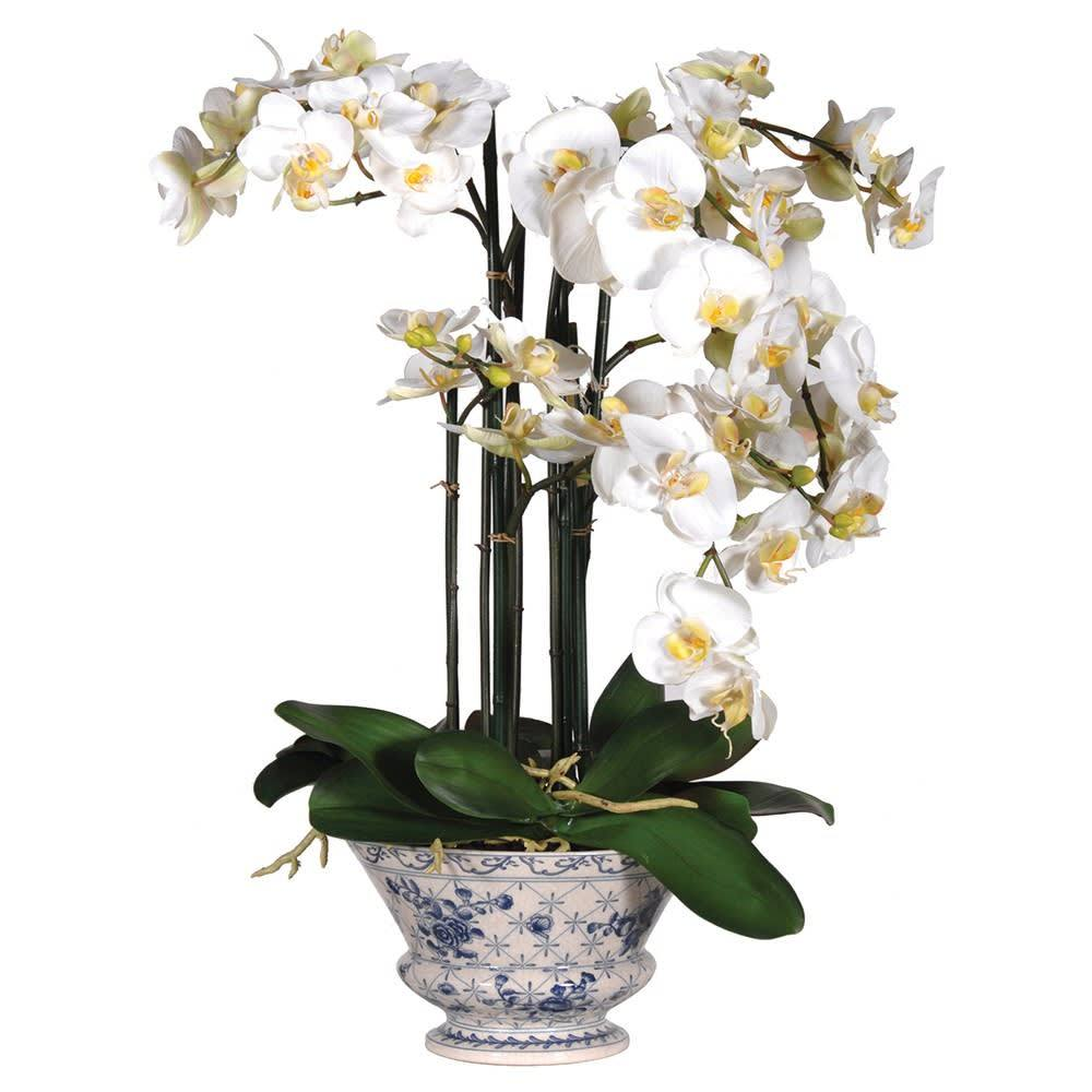 Faux Phalaenopsis Orchid in Ceramic Blue and White Footed Planter - Barnbury