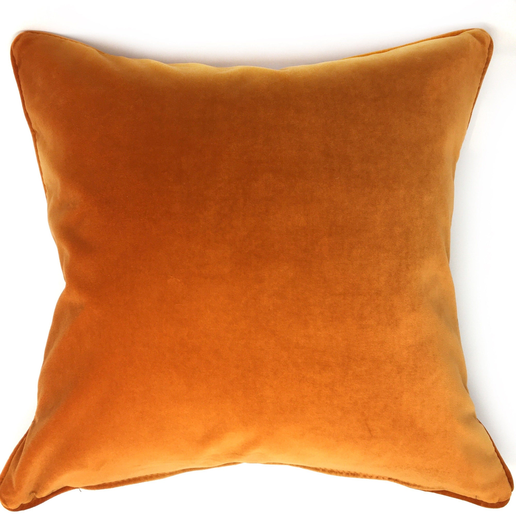 Amber Bollywood Velvet Cushion - Barnbury