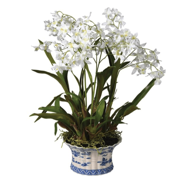 Faux Oncidium Orchid in Chinoiserie Planter - Barnbury