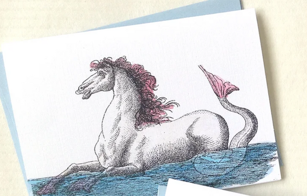 Hippocampus Notecards