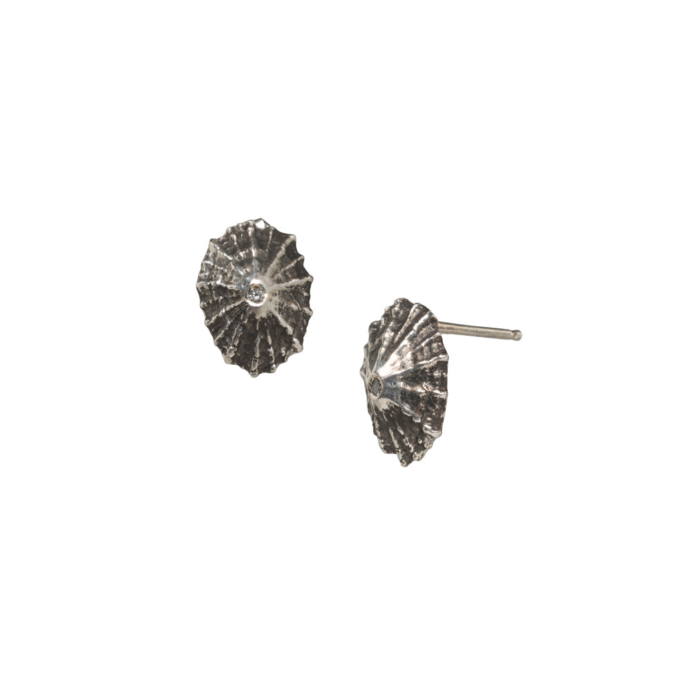 Diamond Crested Limpet Studs