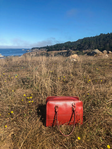 Post bag in dried grass on California coast