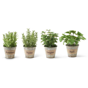"8"" Metal Pot w/ Assorted Herbs (4 Styles)"