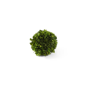Preserved Boxwood Mini Ball