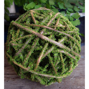 Curly Willow Ball
