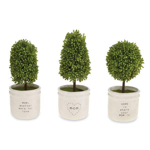 Mom Boxwood Topiaries