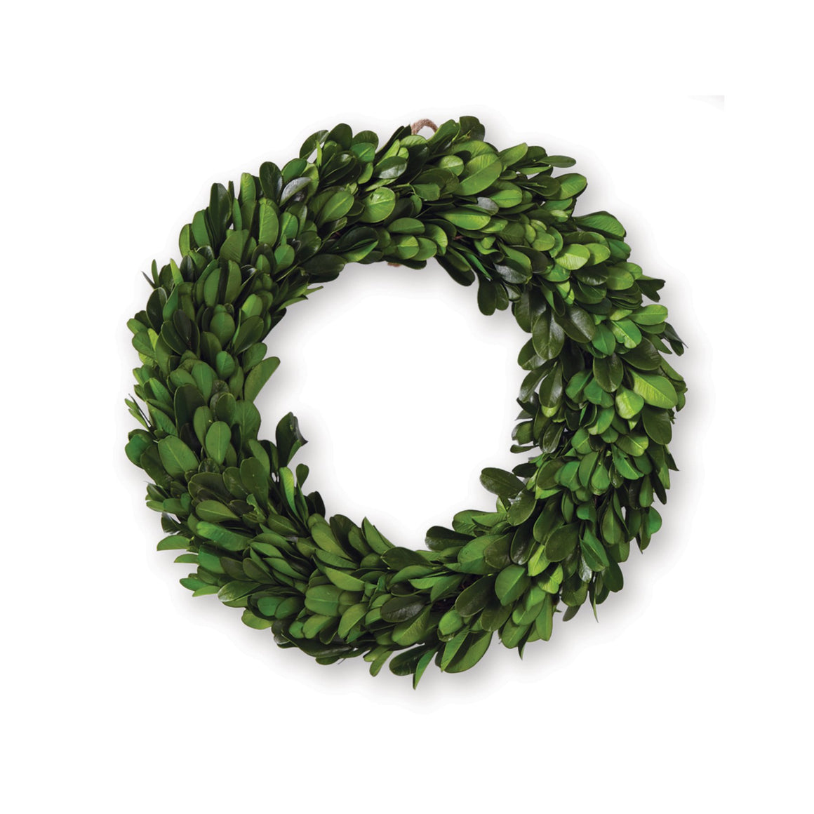 Mini Boxwood Preserved Wreath - Large