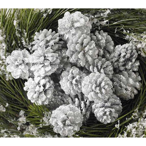 Box of 24 White Glitter Pinecones