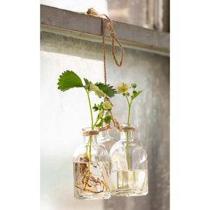 Hanging Flower Bottles