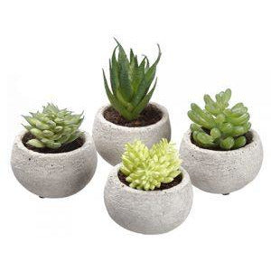 Faux Succulents in Pots