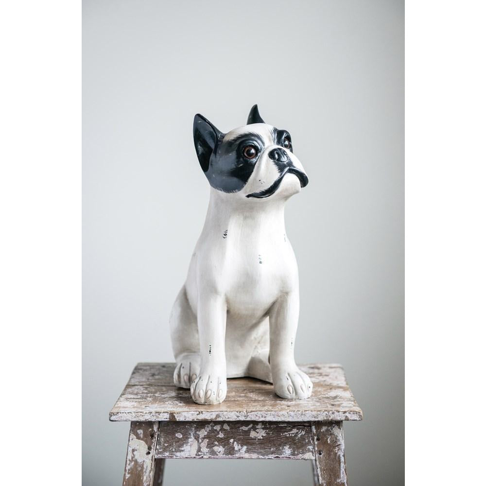 Black & White Sitting Dog