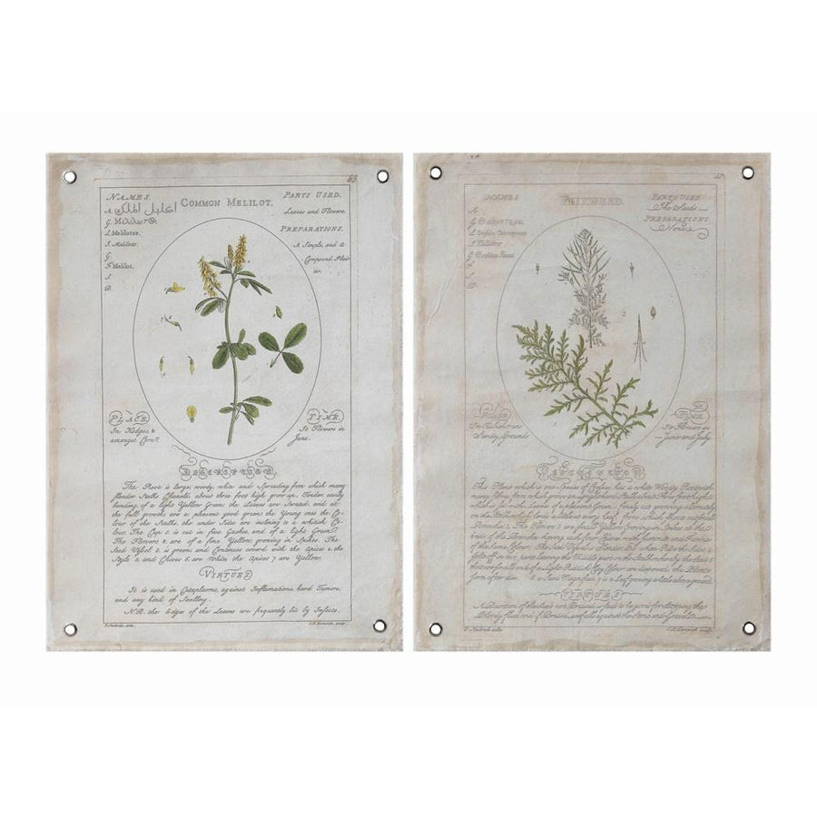 Canvas Wall Decor w/Vintage Reproduction Botanical w/Grommets