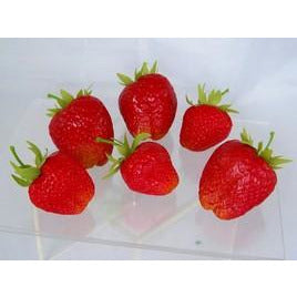 Red Whole Strawberries (Set of 6)