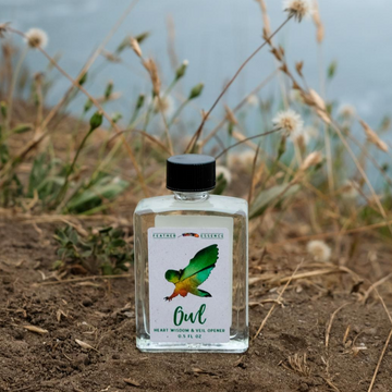 Owl Feather Essence Anointing Oil