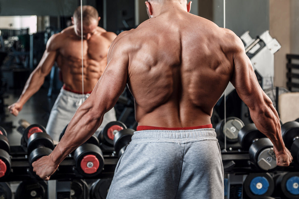 Best-Way-to-Gain-Muscle-Mass-04