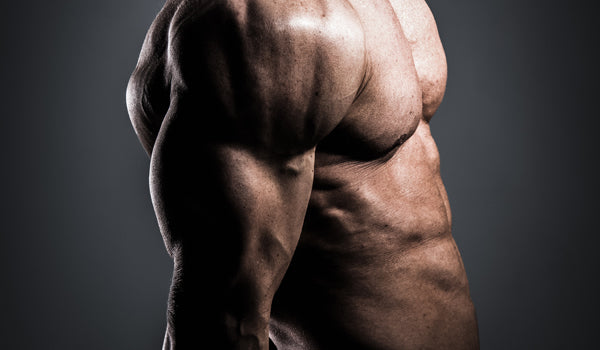 eating-to-gain-muscle02