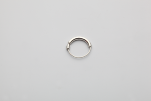 Invisible 383 Ring