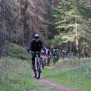 Guided MTB day tours in the Harz
