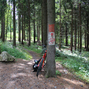 MTB holidays in Pod Smrkem - Checzh Republic