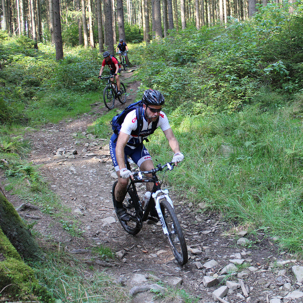 4-day singletrail tour in Harz