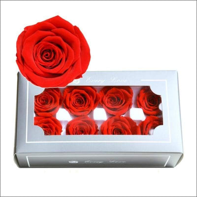 Eternal Life 8PC Rose Box