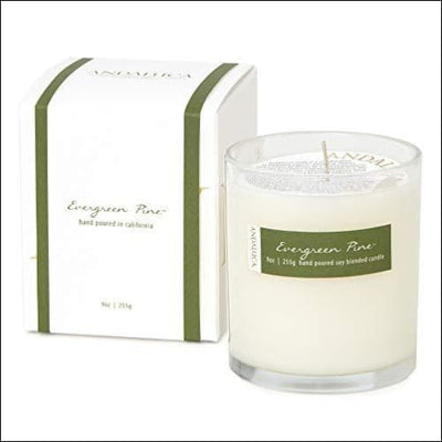 Evergreen Pine Scented Soy Candle - Candles